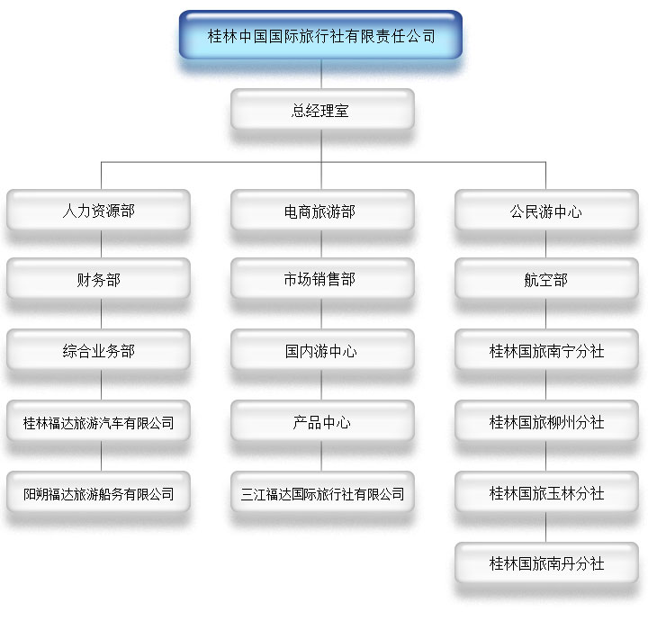 桂林国旅组织机构图